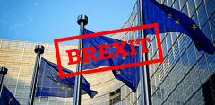 Impact of Brexit on UK limited companies