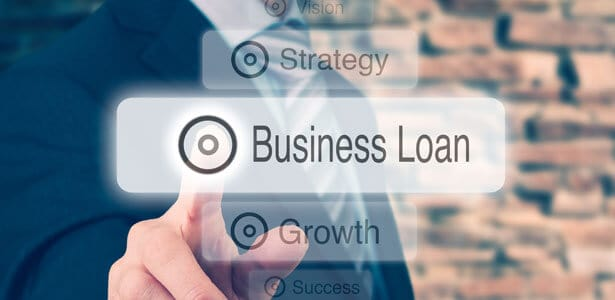 Does the government offer business loans?