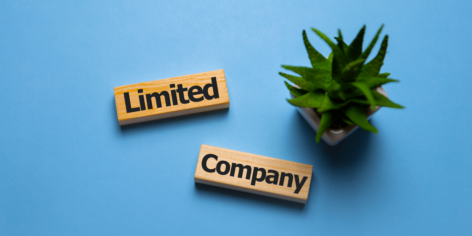 An overhead shot of two blocks of wood each with the words 'Limited' and 'Company' displayed on them to signify the concept of company formation.